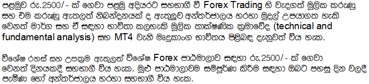 Forex trading sinhala blog